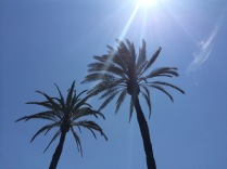 Summer?!
